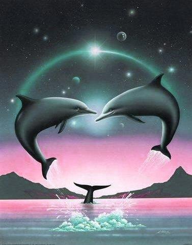 planete sauvage rencontre avec les dauphins